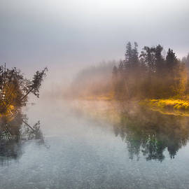 Moment in the Mist by Joy McAdams