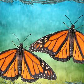Monarch Butterfly Design by Rosalie Scanlon