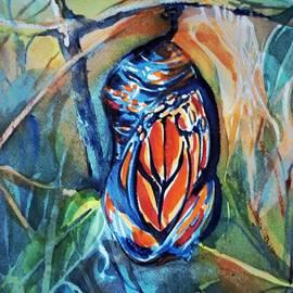 Monarch Chrysalis by Mindy Newman