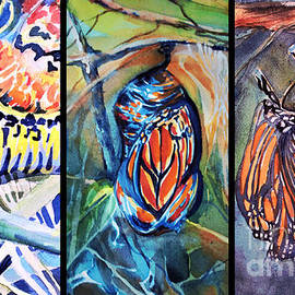 Monarch Life s Cycle by Mindy Newman