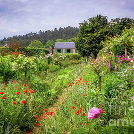 Monet's Lush Cottage Garden, Giverny by Liesl Walsh