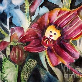 Monkey Orchid by Mindy Newman