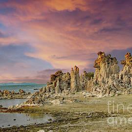 Mono Lake Tufa by Suzanne Wilkinson