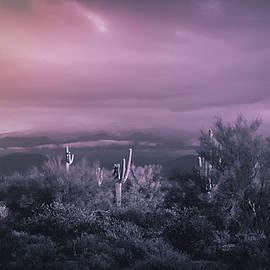 Monochromatic Desert  by Saija Lehtonen