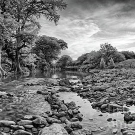 Monochrome View of the Guadalupe River near Canyon Lake - Spring Branch Texas Hill Country  by Silvio Ligutti