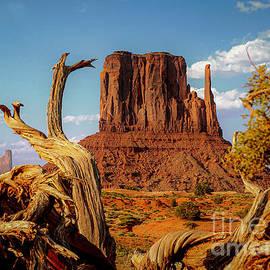 Monument Valley Arizona Desert Mitten by Sea Change Vibes