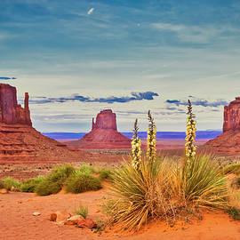 Monument Valley Yucca by Jurgen Lorenzen