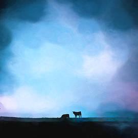 Moo D Blue by Jim Love