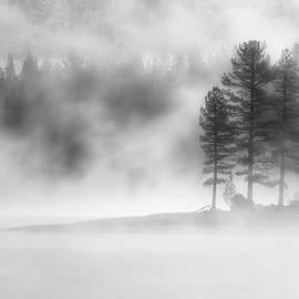 Moody Dawn by Mike Lee