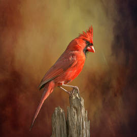 Moody Painterly Redbird by Bill and Linda Tiepelman
