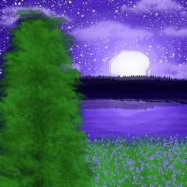 Moon in the Sky by Skyler Jackson