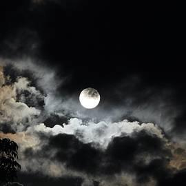 Moody Moon by Bobbie Moller