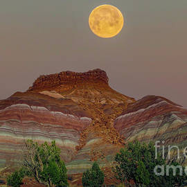 Moon Over Paria by Mitch Shindelbower