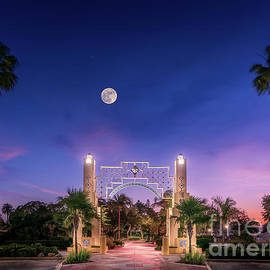 Moon Over Sarasota Bayfront, Florida by Liesl Walsh