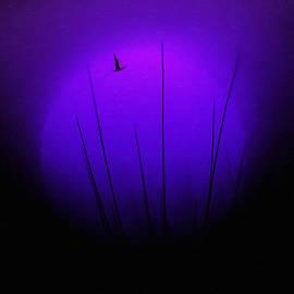 Moon Silhouette by ParaKrytous P