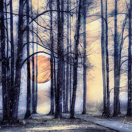 Moonglow in the Winter by Debra and Dave Vanderlaan