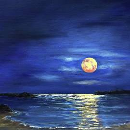 Moonlight Bay by Anne Barberi