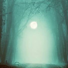 Moonlight Mist by KaFra Art