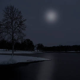 Moonlight on Ice by William Moore
