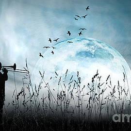 Moonlight Serenade by Kira Bodensted