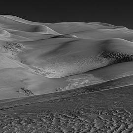 Moonlit Dunes by Angelo Marcialis