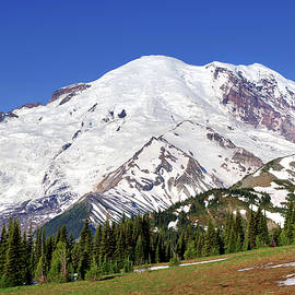 Morning At Mount Rainier by Douglas Taylor