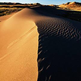 Morning at the dunes by Vishwanath Bhat