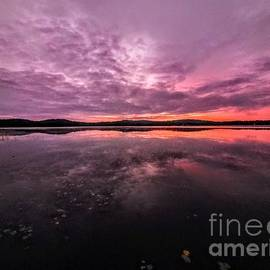 Morning Bliss - Webster Lake, New Hampshire by Dave Pellegrini