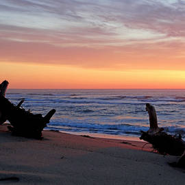 Morning Glow - Top Ten Beaches In the Country by Dianne Cowen