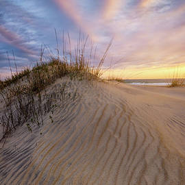 Morning in the Dunes by Kristen Wilkinson