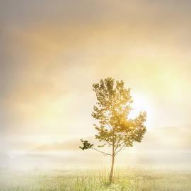 Morning Inspiration by Jordan Hill