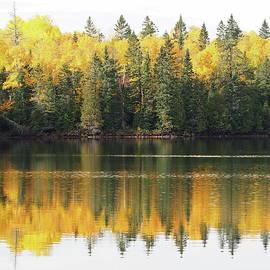 Morning light at the lake by Tom Halseth