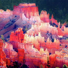 MORNING LIGHT, BRYCE CANYON - A FINE ART PHOTOGRAPH and a BEAUTIFUL 1,000 pc. JIGSAW PUZZLE KIT by Douglas Taylor