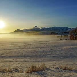 Morning Mist in Lofoten 4 by Dubi Roman