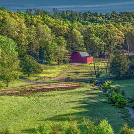 Morning On The Farm by Marcy Wielfaert