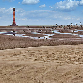 Morris Island Lighthouse Low Tide by Marcia Colelli