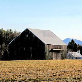 Moss-Covered Barn by Daniel Beard