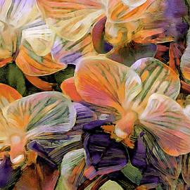 Moth Orchid Bouquet by Susan Maxwell Schmidt