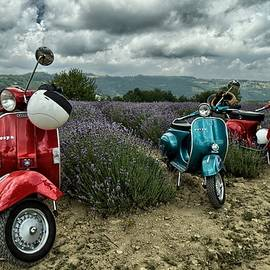 Lavender and scooter Piedmont Italy by Rita Di Lalla