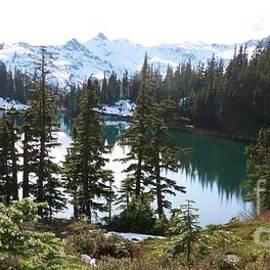 Mount Baker Wilderness Chain Lakes Trail by Art Sandi