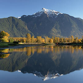 Mount Cheam at Seabird Island by Michael Russell