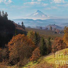 Mount Hood Splendor in Fall Colors by Jackie Follett
