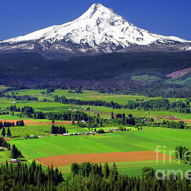 Mount Hood, Upper Hood River Valley by Douglas Taylor