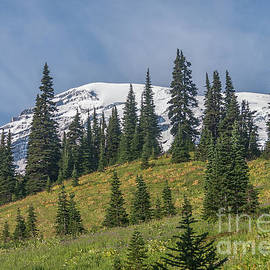 Mount Rainier 14 by Marv Vandehey