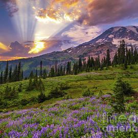 Mount Rainier Majestic Sunset Clouds by Mike Reid