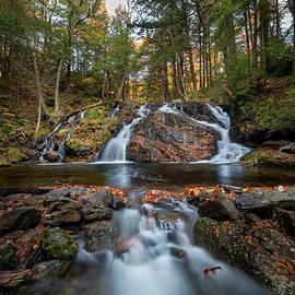 Mount Riga Falls Autumn by Bill Wakeley