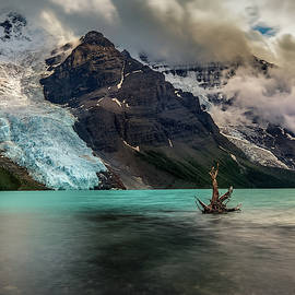 Mount Robson with Berg Glacier, British Columbia, Canada by Yves Gagnon