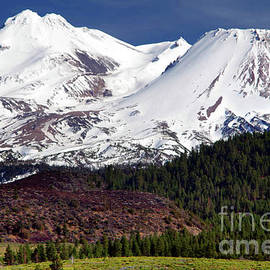 Mount Shasta, Early Spring by Douglas Taylor