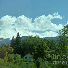 Mount Shasta by Julieanne Case