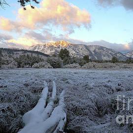 Mount Tallac sunrise, El Dorado National Forest, California, U. S. A. by PROMedias Obray